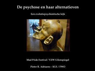 De psychose en haar alternatieven Een evolutiepsychiatrische kijk
