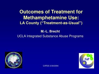Outcomes of Treatment for Methamphetamine Use: LA County  Treatment-as-Usual