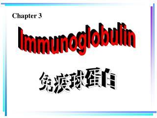 Immunoglobulin