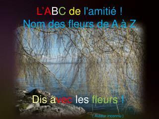 L ABC de lamiti   Nom des fleurs de A   Z