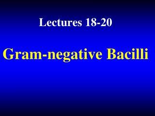 Gram-negative Bacilli