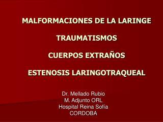 MALFORMACIONES DE LA LARINGE TRAUMATISMOS CUERPOS EXTRAÑOS ESTENOSIS LARINGOTRAQUEAL