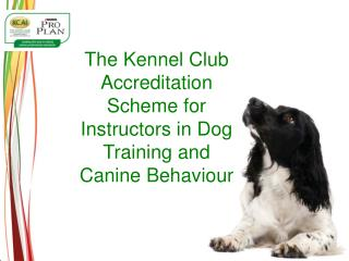 The Kennel Club Accreditation Scheme for Instructors in Dog Training and Canine Behaviour