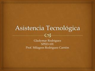Asistencia Tecnol�gica