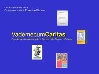 Caritas diocesana di Trieste Osservatorio delle Povertà e Risorse