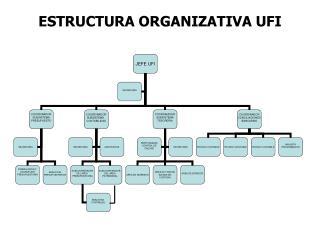 ESTRUCTURA ORGANIZATIVA UFI