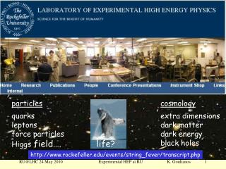 Experimental High Enery Physics at Rockefeller