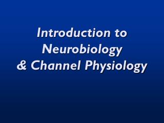 Introduction to Neurobiology & Channel Physiology
