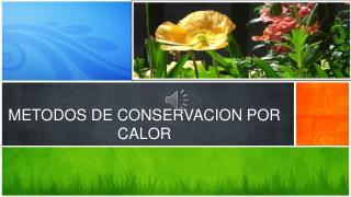 METODOS DE CONSERVACION POR CALOR