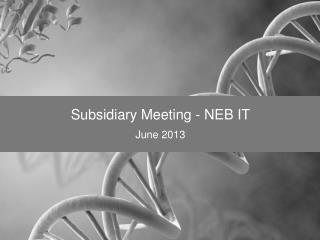 Subsidiary Meeting - NEB IT June 2013