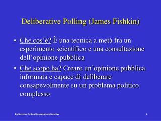 Deliberative Polling (James Fishkin)
