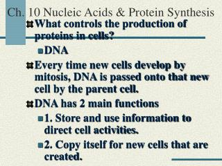 Ch. 10 Nucleic Acids & Protein Synthesis