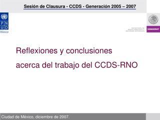 Reflexiones y conclusiones  acerca del trabajo del CCDS-RNO