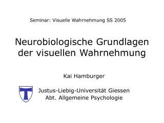 Neurobiologische Grundlagen der visuellen Wahrnehmung