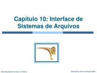 Capítulo 10: Interface de Sistemas de Arquivos