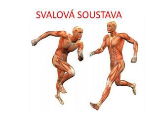 SVALOV� SOUSTAVA