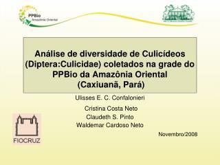 Ulisses E. C. Confalonieri Cristina Costa Neto   Claudeth S. Pinto  Waldemar Cardoso Neto