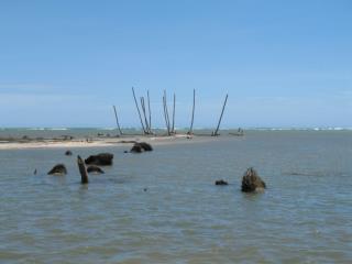 Barbados eustatic sea level record from corals
