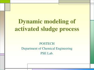 Dynamic modeling of activated sludge process