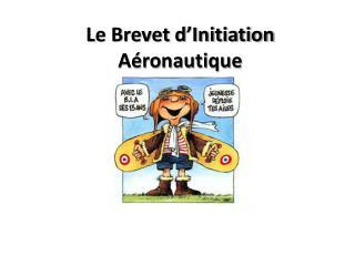 Le Brevet d�Initiation A�ronautique