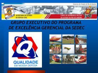 GRUPO EXECUTIVO DO PROGRAMA  DE EXCELÊNCIA GERENCIAL DA SEDEC