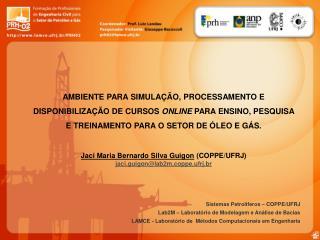 Sistemas Petrolíferos – COPPE/UFRJ Lab2M – Laboratório de Modelagem e Análise de Bacias