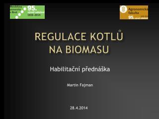 Regulace kotlů  na biomasu