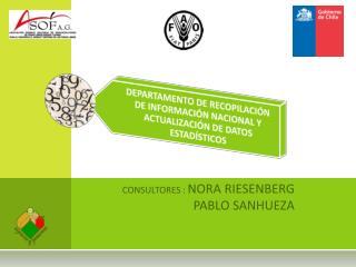 CONSULTORES :  NORA RIESENBERG   PABLO SANHUEZA