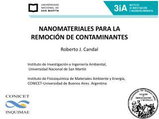NANOMATERIALES PARA LA REMOCI�N DE CONTAMINANTES Roberto J.  Candal