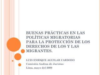 LUIS ENRIQUE AGUILAR CARDOSO Comisión Andina de Juristas Lima, mayo del 2009