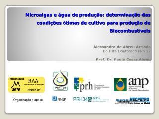 Alessandra de  Abreu Arriada Bolsista Doutorado PRh  27 Prof. Dr. Paulo Cesar  Abreu