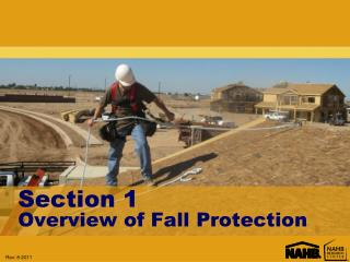 Section 1 Overview of Fall Protection