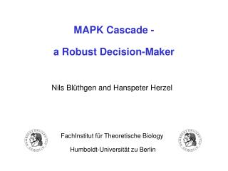 MAPK Cascade - a Robust Decision-Maker
