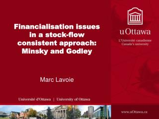 Financialisation issues in a stock-flow consistent approach: Minsky and Godley