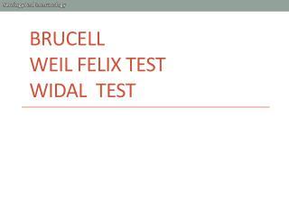 Brucell Weil Felix test  Widal   test