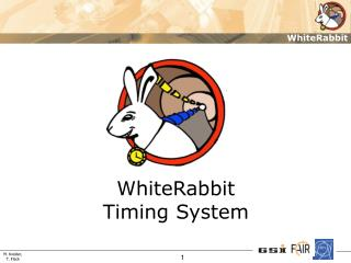 WhiteRabbit Timing System