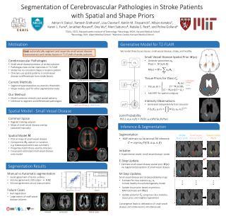Segmentation of Cerebrovascular Pathologies in Stroke Patients  with Spatial and Shape Priors