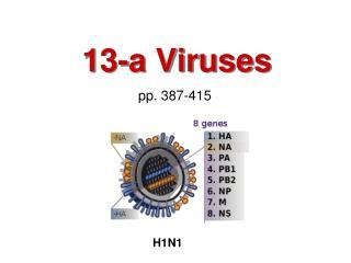 13-a Viruses