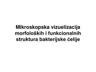 Mikroskopska  vizu e lizacija morfoloških i funkcionalnih struktura bakterijske ćelije
