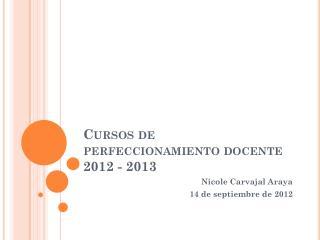 Cursos de perfeccionamiento docente 2012 - 2013