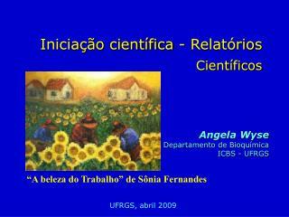 Iniciação científica - Relatórios  Científicos