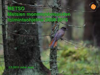 METSO Metsien monimuotoisuuden toimintaohjelma 2008-2016