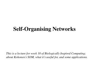 Self-Organising Networks