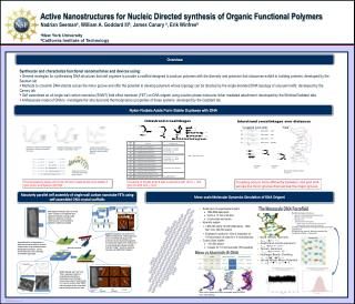 Active Nanostructures for Nucleic Directed synthesis of Organic Functional Polymers