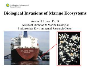 Biological Invasions of Marine Ecosystems Anson H. Hines, Ph. D.