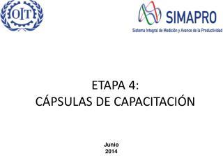 ETAPA 4: CÁPSULAS DE CAPACITACIÓN