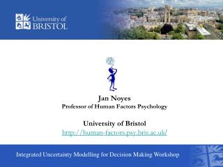 Integrated Uncertainty Modelling for Decision Making Workshop
