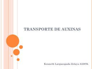 TRANSPORTE DE AUXINAS