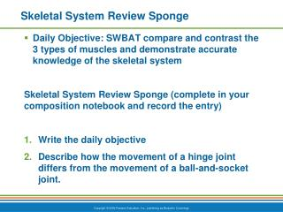Skeletal System Review Sponge