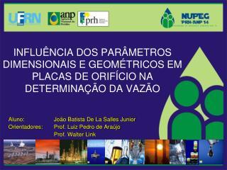 Aluno: João Batista De La Salles Junior Orientadores: Prof. Luiz Pedro de Araújo